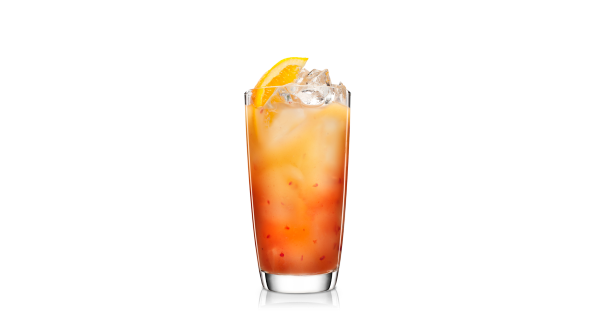 Communication on this topic: Fizzy Cranberry-Lemonade Punch, fizzy-cranberry-lemonade-punch/