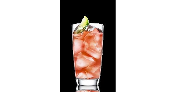 Spiced Bow Wow Recipe Malibu Rum Drinks